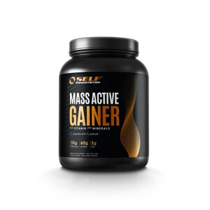 Active Whey Gainer, 2 kg, Self