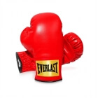 Youth Boxing Gloves, Everlast